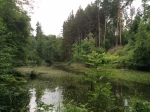 Barrensee in Rotwildpark.