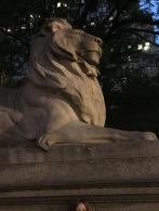 Library lion.
