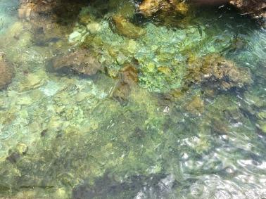Green sea rocks, Cascais.